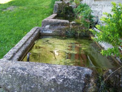 Le doux murmure de l'eau dans les anciens abreuvoirs